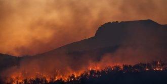 bushfire scene